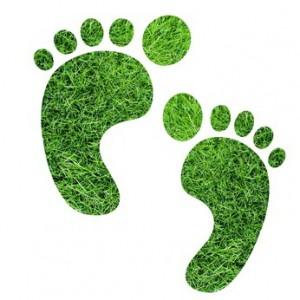 Fussabdruck aus Gras