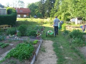 Gemeinschaftsgarten Gallneukirchen