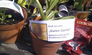 """Blumentopf mit Schild """"Ein Gruss vom Guten Garten"""""""