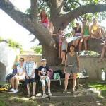 Kinder sitzen rund um einen Baum
