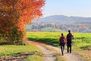 zwei Wanderer auf einem Wanderweg