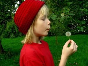 Gewalt ist auch bei Rotkäppchen ein Thema - ist das Märchen wirklich für Kinder geeignet? (Foto: S.-Hofschlaeger/pixelio.de)