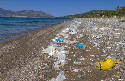 Bild: schmutziger Strand