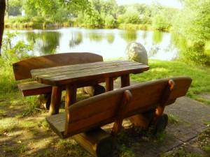 Der richtige Ort für das perfekte Picknick - in der Natur und am Gewässer. (Foto:Löwenzahn/pixelio.de)