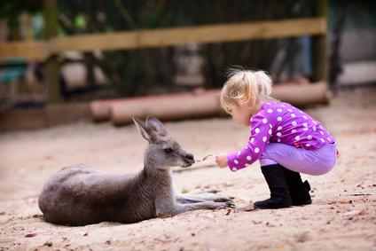 Bild: Kind mit Känguruh