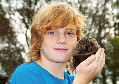 Bild: Kind mit Igel in Hand