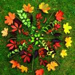 Herbst Naturmandala!