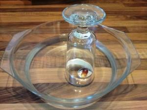 Bild: Glasschüssel mit Gummibärchen