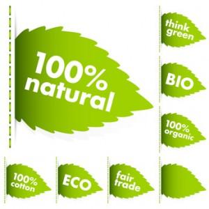 Bild: grüne Blätter mit Begriffen zu öko