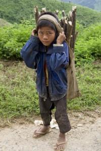 Bild: Kind transportiert Brennholz, Laos