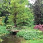 14.-20. Juni 2015: Gartenreise Schleswig-Holstein