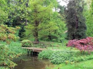 Garten mit Brücke und Teich