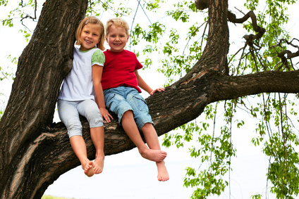 boy and girl sitting on a high tree in summer