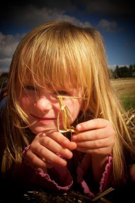 Gründlich die Haare durchzukämmen ist das Einzige, das hilft, wenn dem Kind die Laus über die Leber gelaufen ist. (Foto: Hilde Vogtländer/pixelio.de)