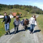 Abenteuerlustige Urlaubsideen für Familien in Österreich