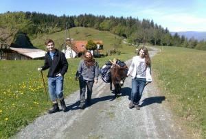 Ob Tagestrip oder 3-Tages-Wanderung - mit dem Esel lernt man Entschleunigung. (Foto: www.eselwandern.at)