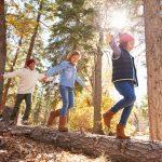 """""""Kinder, packt die Schulbücher weg, heute geht's in den Wald!"""""""