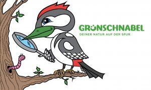 Grünschnabel Webbanner-Natur-2018-Groß