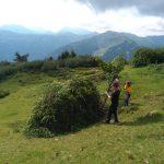 Im Bergwald mitarbeiten
