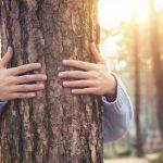Was meint Waldpädagogik?