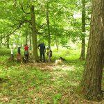 FAQs zu Waldkindergärten