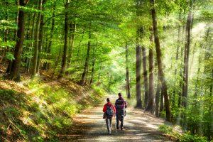 """""""Waldbaden"""" - beim bewussten Aufenthalt im Wald Energie tanken. Foto: Fotolia/eyetronic"""