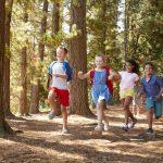 Im Wald Körper und Geist stärken