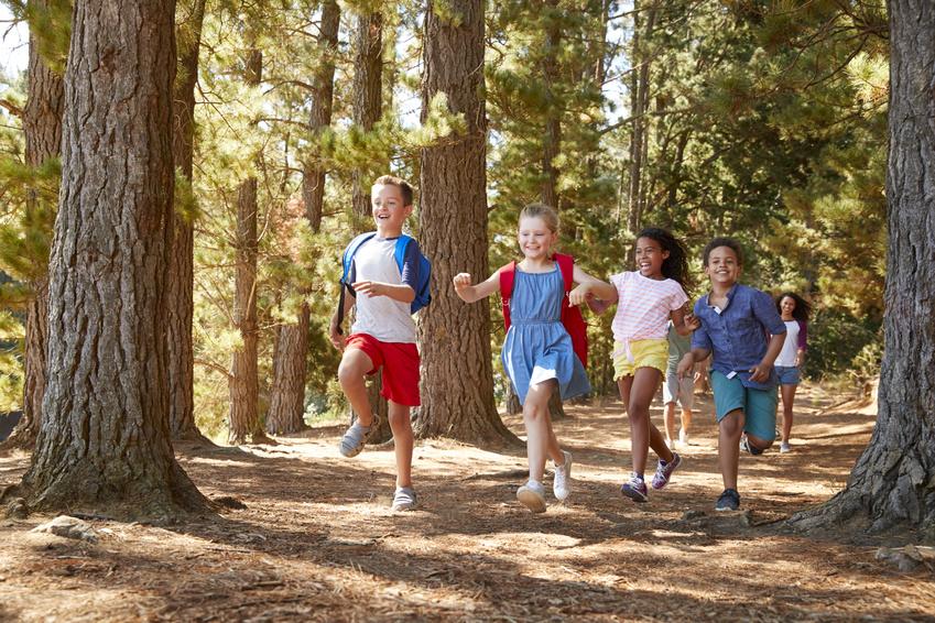 Naturerfahrungen stärken Kinder sowohl mental wie auch körperlich.