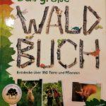 Gute Wald- und Naturbücher für Kinder