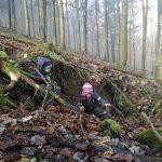 Infoabend zu neuem Waldkindergarten in Sonnberg