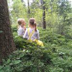 """""""Kinder im Wald"""" Ferienwochen im August"""